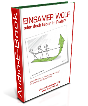 Erfolgsteams Audio-E-Book